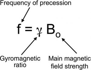 frequency of precession
