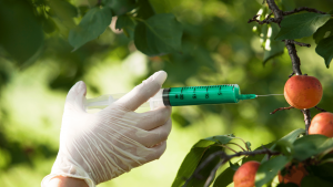 Genetically Modified Foods Research Paper Example