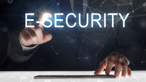E-Business Security Functionality, Advantages, Security Challenges & External Security Mechanisms