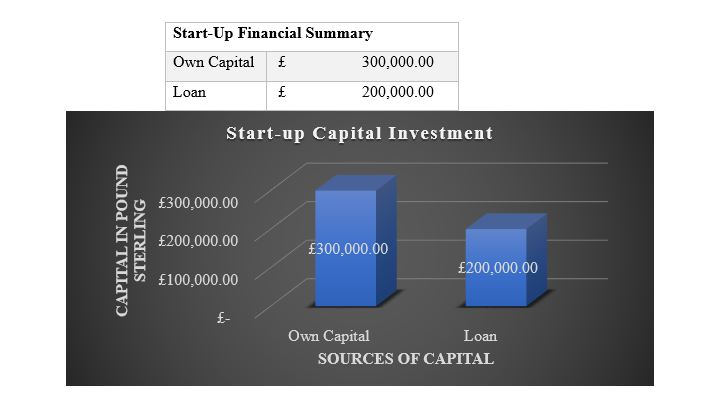 Financial Model (Own Capital and Loan)