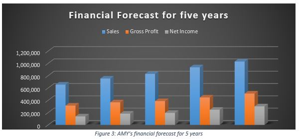 Financial Forecast for five years