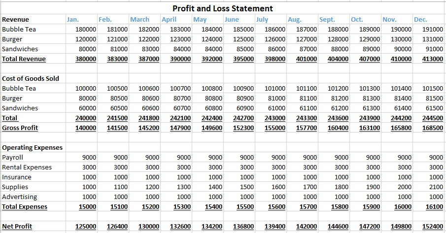 Profit and Loss Statement for the Next Twelve Months