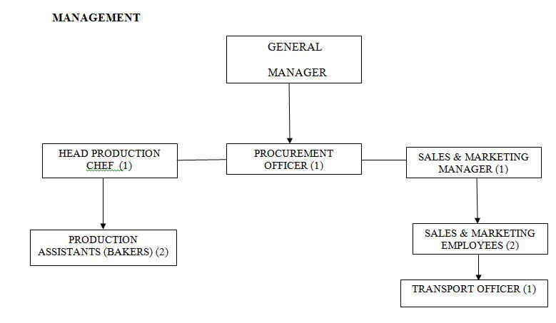 ORGANIZATIONS AND MANAGEMENT PLAN